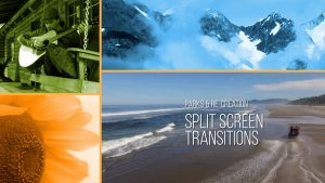 Parks & Re-Creation Split Screen Transitions FREE SAMPLE